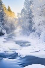 Winterbild.jpg
